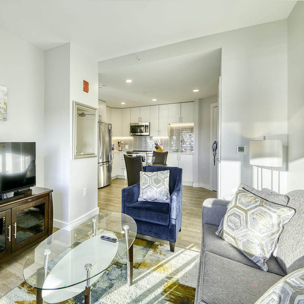 One Chestnut Place Apartments